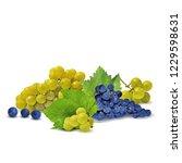 fresh  nutritious  tasty grapes.... | Shutterstock .eps vector #1229598631