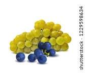 fresh  nutritious  tasty grapes.... | Shutterstock .eps vector #1229598634