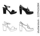 vector design of footwear and... | Shutterstock .eps vector #1229626384