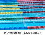 swimming pool   lane lines... | Shutterstock . vector #1229628634