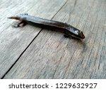 lizard on a wood background.  ... | Shutterstock . vector #1229632927