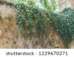 old sturdy concrete wall... | Shutterstock . vector #1229670271