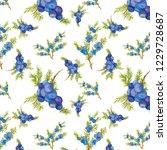 seamless pattern of juniper...   Shutterstock . vector #1229728687