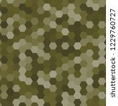 hexagonal pattern   grid. color ... | Shutterstock . vector #1229760727