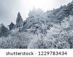frozen forest in huangshan... | Shutterstock . vector #1229783434
