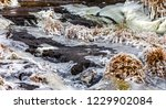 fast river with ice in late... | Shutterstock . vector #1229902084