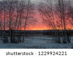 winter sunsets in the north are ... | Shutterstock . vector #1229924221