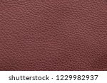 sample genuine leather brown... | Shutterstock . vector #1229982937