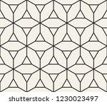 vector seamless pattern. modern ... | Shutterstock .eps vector #1230023497