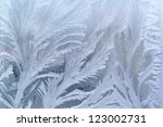 Feathery Frost Pattern   Ice...