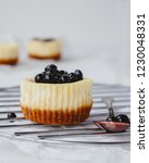 mini cheesecakes with blueberry ... | Shutterstock . vector #1230048331