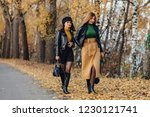 two cozy smiling young girls...   Shutterstock . vector #1230121741