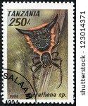 Small photo of TANZANIA - CIRCA 1994: A stamp printed in Tanzania shows image of a micrathena sp., circa 1994