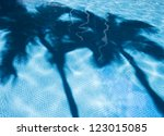 Palm Tree Shadows In A Blue...
