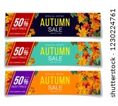 colorful vector set of vouchers ... | Shutterstock .eps vector #1230224761