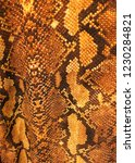 fabric texture in snake pattern ... | Shutterstock . vector #1230284821
