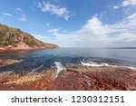 australia  new south wales... | Shutterstock . vector #1230312151