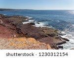 reef along the coastline of new ... | Shutterstock . vector #1230312154