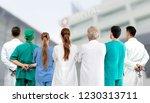 healthcare profession teamwork...   Shutterstock . vector #1230313711