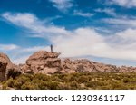 man standing on the edge of...   Shutterstock . vector #1230361117