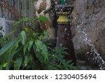 shutterspeed water fast