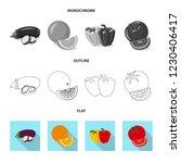 isolated object of vegetable...   Shutterstock .eps vector #1230406417