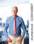 portrait of a senior financial...   Shutterstock . vector #1230418807