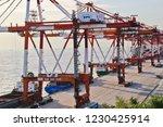pudong  shanghai china   10 1...   Shutterstock . vector #1230425914