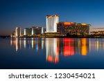 laughlin  nevada   november 11  ... | Shutterstock . vector #1230454021