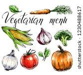set of vegetables c healthy... | Shutterstock .eps vector #1230488617