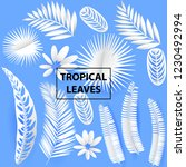 tropical white paper cut leaves.... | Shutterstock .eps vector #1230492994