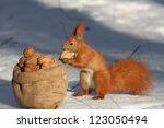Squirrel Sitting Near The Bag...