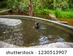 image of asian boy swimming in... | Shutterstock . vector #1230513907
