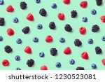 colorful fruit pattern of wild... | Shutterstock . vector #1230523081