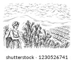 woman gatherer harvests coffee... | Shutterstock .eps vector #1230526741
