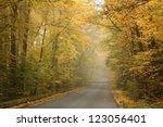 Rural Road Running Along The...