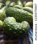 green vegetables. cucumbers.... | Shutterstock . vector #1230570007