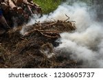 smoke  carbon dioxide from hay... | Shutterstock . vector #1230605737