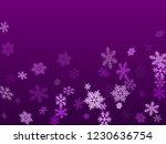 winter snowflakes border card... | Shutterstock .eps vector #1230636754