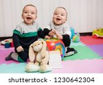 adorable baby twin boys playing ... | Shutterstock . vector #1230642304