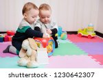 adorable baby twin boys playing ... | Shutterstock . vector #1230642307