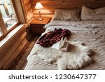 rustic interior of log cabin... | Shutterstock . vector #1230647377