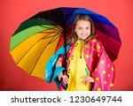 enjoy rainy weather with proper ... | Shutterstock . vector #1230649744