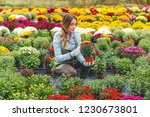 florist in greenhouse | Shutterstock . vector #1230673801