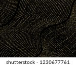 gold curve lines of multiple... | Shutterstock .eps vector #1230677761