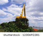 backhoe dump water hyacinth...   Shutterstock . vector #1230692281