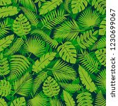 tropical leaves background.... | Shutterstock .eps vector #1230699067