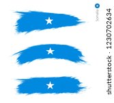 set of 3 grunge textured flag... | Shutterstock .eps vector #1230702634