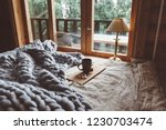 rustic interior decoration of... | Shutterstock . vector #1230703474