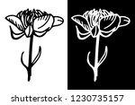 wild flower hand drawn isolated ... | Shutterstock .eps vector #1230735157